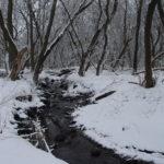 Starkweather Creek in winter