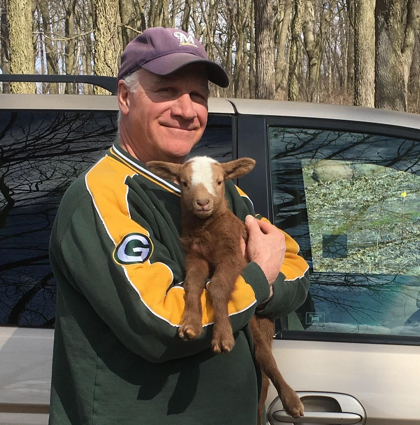 Biscuit lamb just born